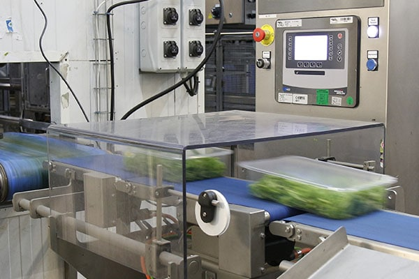 checkweigher CKW for food-processing industry