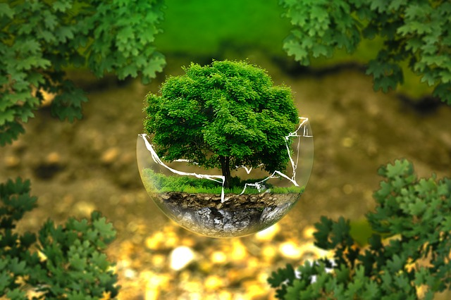 Environment and sustainable development at Precia Molen